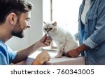 Stock photo cropped image of handsome doctor veterinarian at vet clinic is examining cute cat while his owner 760343005