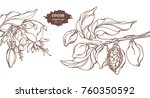 vector template of cocoa tree... | Shutterstock .eps vector #760350592