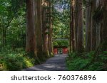 Stock photo the shinto gate of the togakushi jinja shrine in forest 760376896