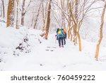 winter landscape in the... | Shutterstock . vector #760459222