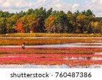 carlisle  ma  usa   october 17  ... | Shutterstock . vector #760487386