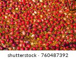 carlisle  ma  usa   october 17  ... | Shutterstock . vector #760487392