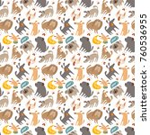 seamless pattern with dogs   Shutterstock . vector #760536955
