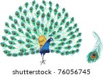 Illustration With Peacock And...