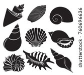 vector sea shells. seashell... | Shutterstock .eps vector #760696636