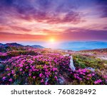 the magic rhododendron blossoms ...   Shutterstock . vector #760828492