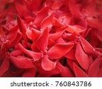 ixora chinensis lamk red... | Shutterstock . vector #760843786
