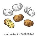 potato whole and slice. vector...   Shutterstock .eps vector #760873462