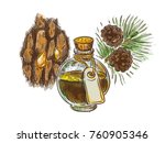 pine tar in a bottle with... | Shutterstock .eps vector #760905346