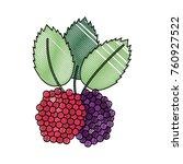 delicious raspberries fruit | Shutterstock .eps vector #760927522
