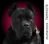 vector low poly portrait cane... | Shutterstock .eps vector #760943278