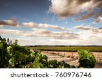 Orange River Valley Landscape...