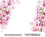 Spring Flowers Hyacinth ...