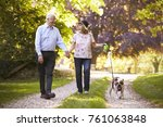 Stock photo senior couple walking with pet bulldog in countryside 761063848