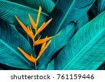 colorful flower on dark... | Shutterstock . vector #761159446