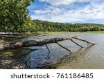 uprooted tree trunks fallen in...   Shutterstock . vector #761186485