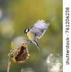 Little Bird Flies To The Flowe...