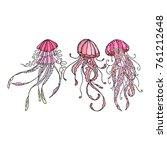octopus icon illustration.... | Shutterstock . vector #761212648