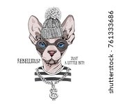 bandit sphynx cat in a striped...   Shutterstock .eps vector #761333686