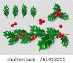 holly set. realistic leaves ... | Shutterstock .eps vector #761413255