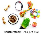 Stock photo concept pet care playing and training toys accessories and feed on white background top view 761475412