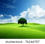 one tree and perfect grass field | Shutterstock . vector #76166707