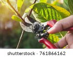 Gardener Pruning Trees With...