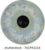 eye iris    realistic vector    ...   Shutterstock .eps vector #761941216