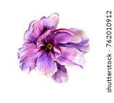 watercolor peonies and pink... | Shutterstock . vector #762010912