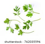 parsley herb isolated on white... | Shutterstock . vector #762035596