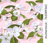 apple blossom vector seamless... | Shutterstock .eps vector #762089362