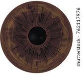eye iris    realistic vector    ...   Shutterstock .eps vector #762117976