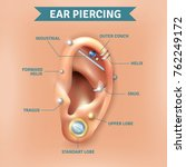 top different types of ear... | Shutterstock . vector #762249172