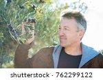 handsome man posing in olive... | Shutterstock . vector #762299122