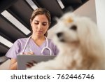 medical practice with woman... | Shutterstock . vector #762446746