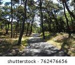 cape cod rail trail | Shutterstock . vector #762476656