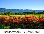 landscape of provence  france...   Shutterstock . vector #762490762