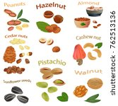 set of nuts. peanuts  cashews ... | Shutterstock .eps vector #762513136