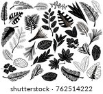 black icons of leaves of... | Shutterstock .eps vector #762514222