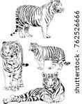vector drawings sketches... | Shutterstock .eps vector #762526666