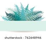 fern frond frame image... | Shutterstock . vector #762648946