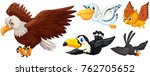 different types of birds flying ... | Shutterstock .eps vector #762705652