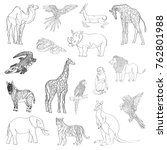 vector illustration. set of... | Shutterstock .eps vector #762801988