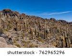 isla incahuasi in salar de... | Shutterstock . vector #762965296