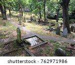 auckland   nov 25 2017 graves... | Shutterstock . vector #762971986