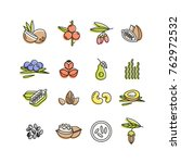 superfoods line vector icons.... | Shutterstock .eps vector #762972532
