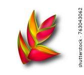 heliconia flower  3d vector... | Shutterstock .eps vector #763043062
