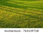 sunrise on green grass | Shutterstock . vector #763139728