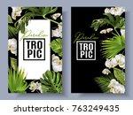 vector botanical vertical... | Shutterstock .eps vector #763249435