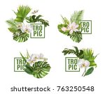 vector botanical banners set... | Shutterstock .eps vector #763250548